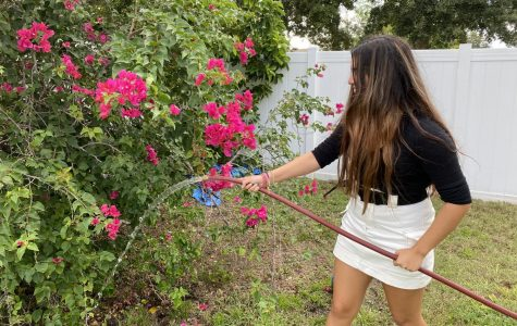 Adkinson waters flowers in her own backyard that she has been tending to all Summer long.